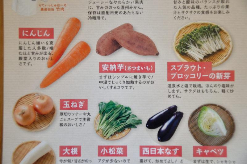 らでぃっしゅぼーやの野菜の説明が書いてあるカタログ