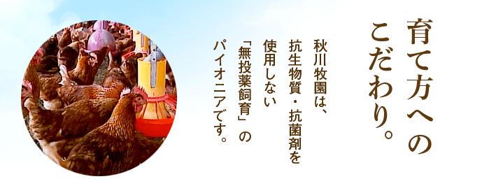 秋川牧園鶏肉へのこだわり