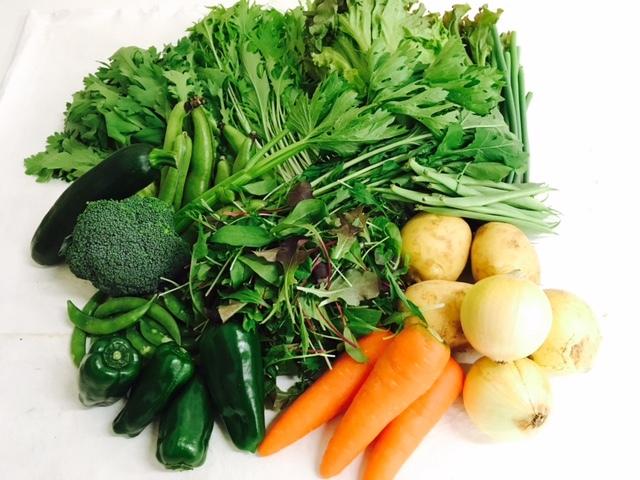 有限会社むらおか たくさんの野菜が入った野菜セット