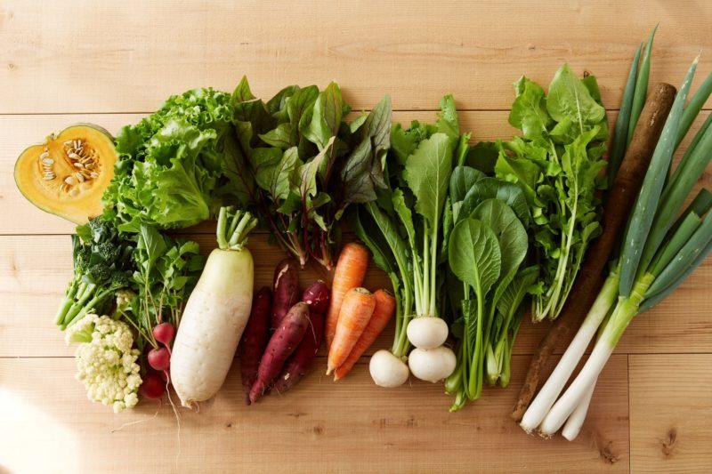 柴海農園のわくわく野菜セットLの写真