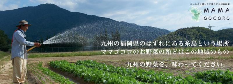 ママゴコロ ホームページより 畑に水を撒く生産者