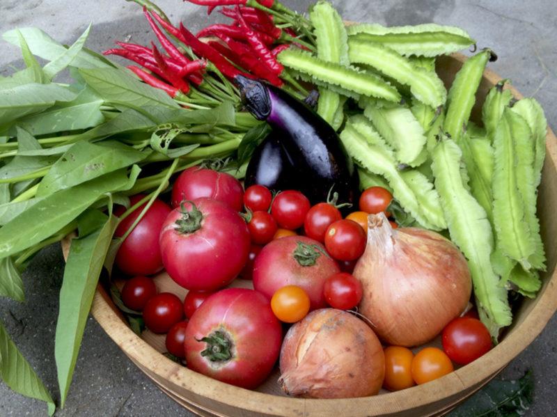 ベジタブルパーク ホームページより野菜の画像