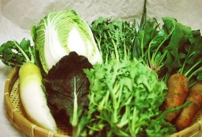 EMショップ百姓家族の野菜セット8品目の画像