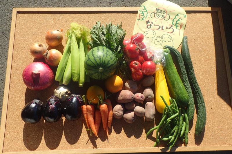 愛足るベジタブルの野菜セット