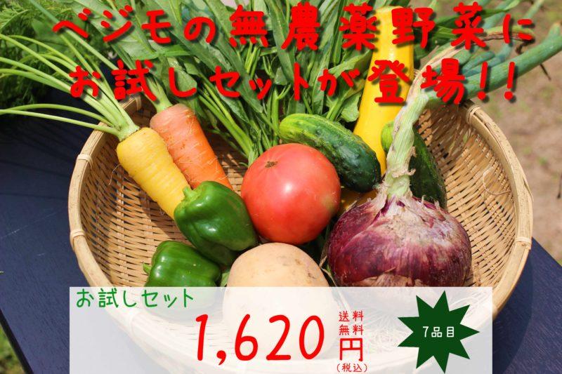 色とりどりの野菜が7品目ほど並んでいる、ベジモひろしまのお試しセットの画像