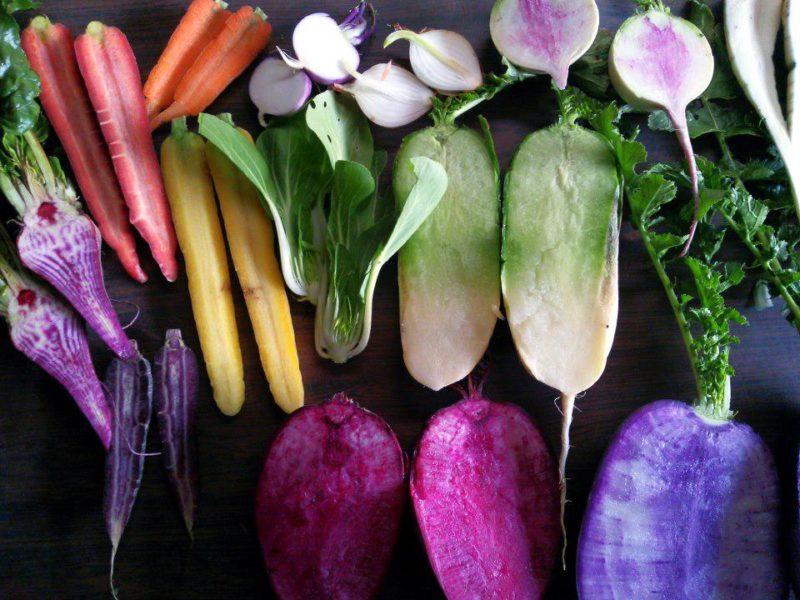 北山農園ホームページより たくさん並んだカラフルな根菜