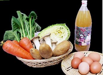 さんらいふよくばりセット(お試しセット) 野菜と卵とリンゴジュース