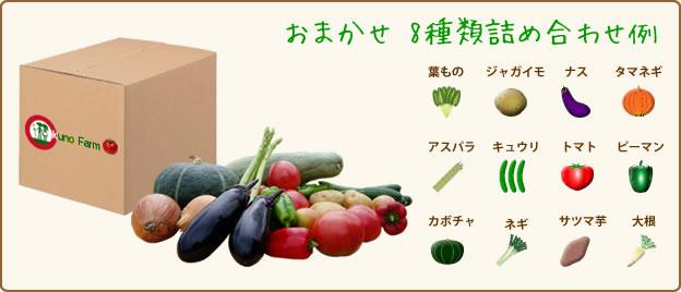 奥野ファーム 野菜セット一例