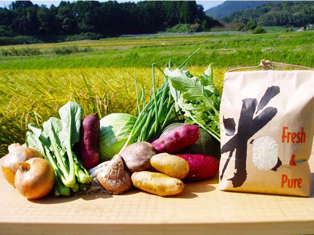 田んぼをバックに並ぶ、奥野ファームの力強い野菜