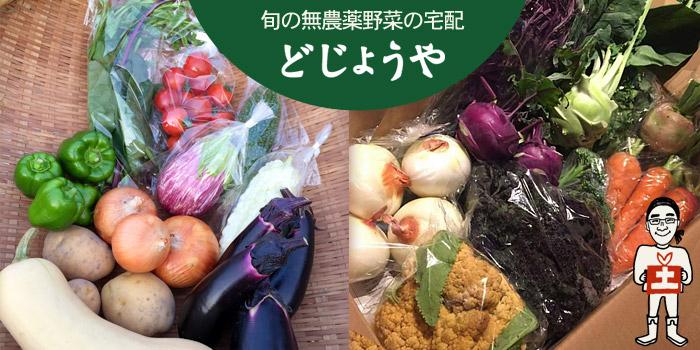 どじょうやホームページより たくさんの野菜の画像
