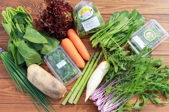 農吉ホームページより 農吉の野菜セット