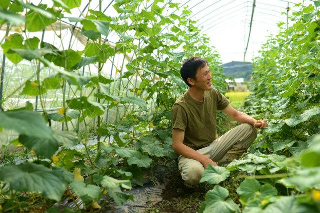 飛騨高山よしま農園ホームページより 笑顔で畑に座る生産者の画像