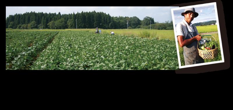 おきたま新鮮組ホームページより 広大な畑の画像