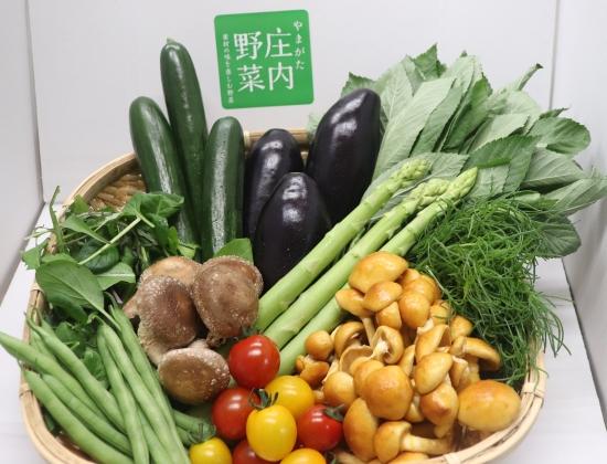 やまがた庄内野菜のたくさんの野菜が入ったセット