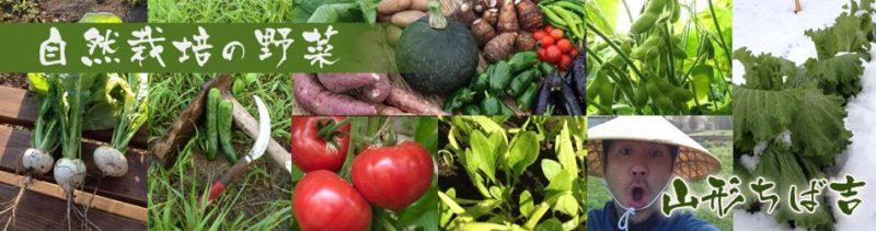 山形ちば吉ホームページより たくさんの野菜の画像