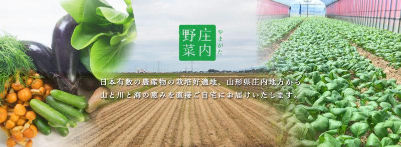 やまが庄内野菜ホームページより 広々とした畑の画像