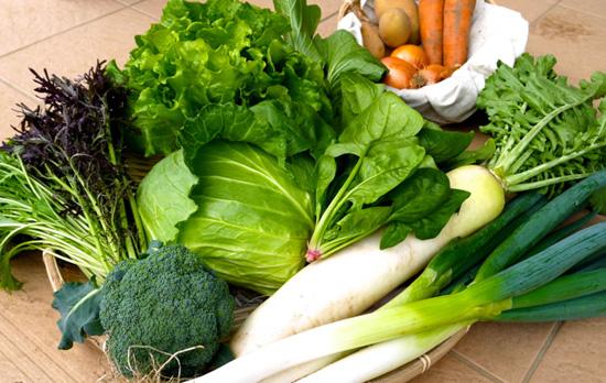 久松農園の野菜セット たくさんの美味しそうな野菜が並んだ画像