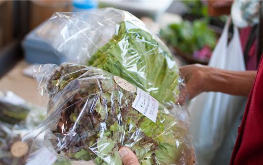 のらごころの野菜を手に取る消費者