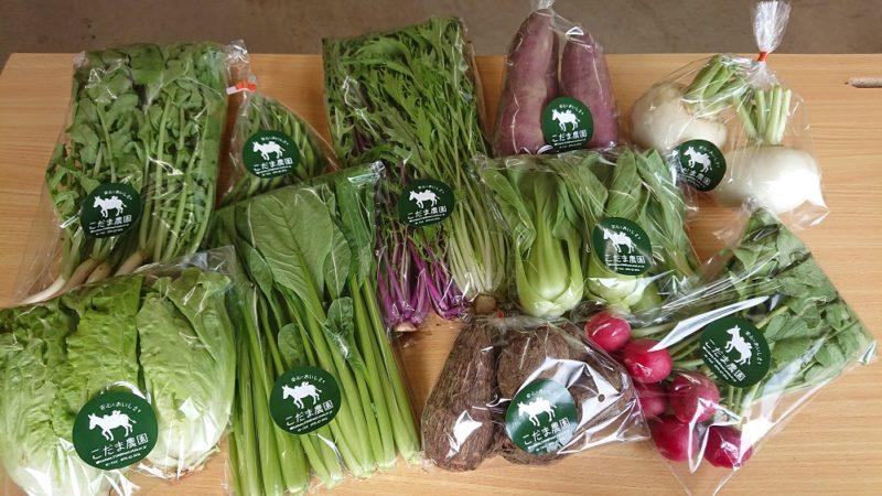 こだま農園の野菜セット 見た目の美しい野菜が綺麗に並んでいる画像