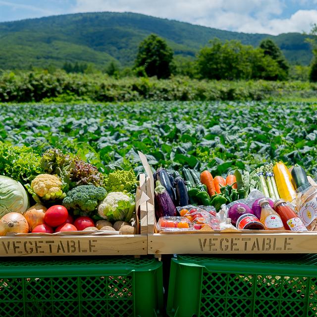ひろさきマーケットホームページより 畑の前に並んだ美しい野菜セットの画像