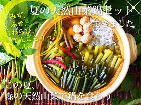 あきた森の宅配便 山菜鍋のセットの画像