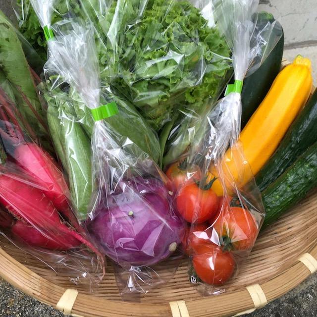 まごころふるさと便ホームぺージより 健康村の野菜セットの画像