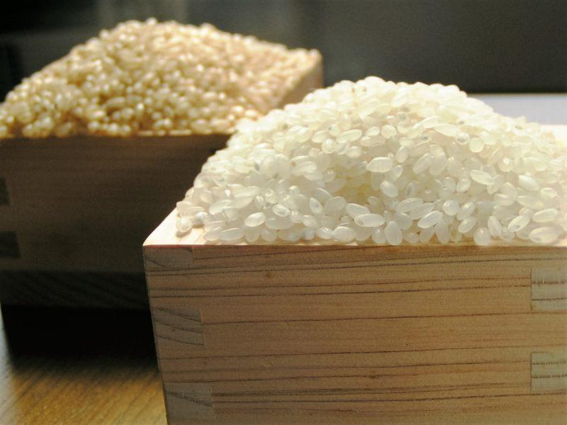 松橋ファームのお米