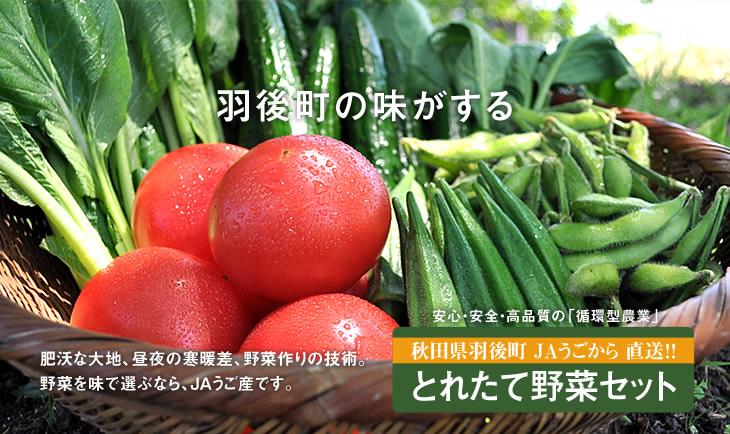 JAうごオンラインショップより 野菜セットの画像