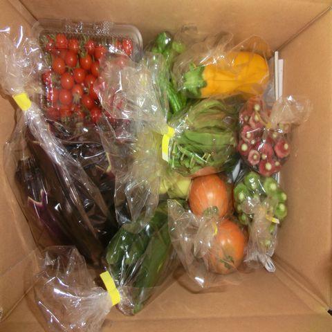 遠野もぐもぐカントリー 野菜セットの画像 たくさんの野菜が箱にたくさん詰まっている