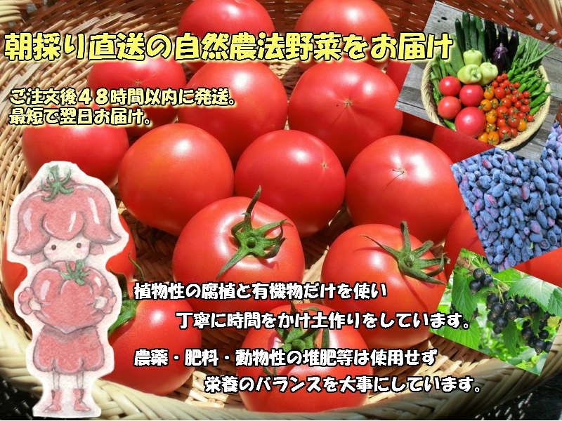 遠野もぐもぐカントリーホームページより トマトの画像 美味しそうなトマトがたくさんザルの上に並んでいる