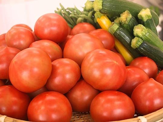 TAROやおやホームページより トマトとズッキーニがたくさん並んだ画像