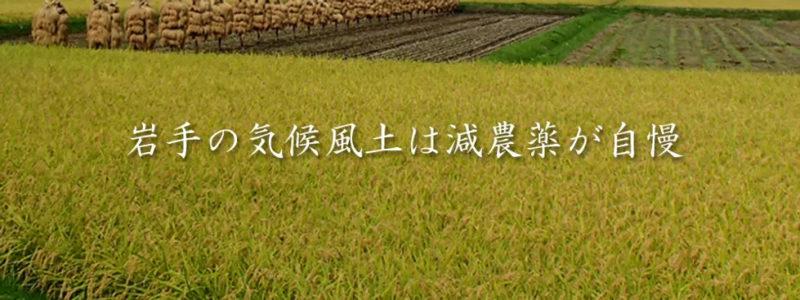 田んぼをバックに「岩手の気候風土は減農薬が自慢」の文字