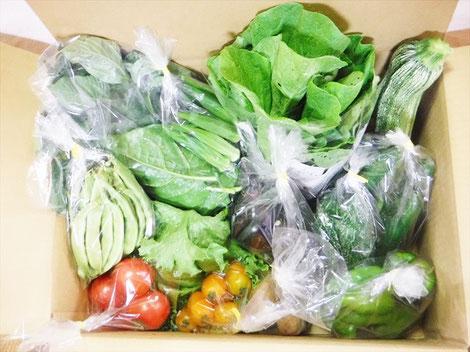 いのちの土の農園ホームページより たくさんの野菜が段ボールに詰め込まれた野菜セットの画像
