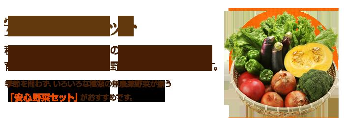 秋川牧園ホームページより 安心野菜セットの画像