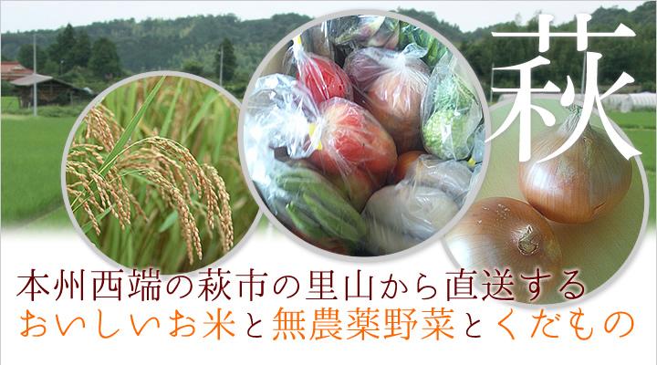 癒しの風ふうみホームページより 野菜やお米が映った画像