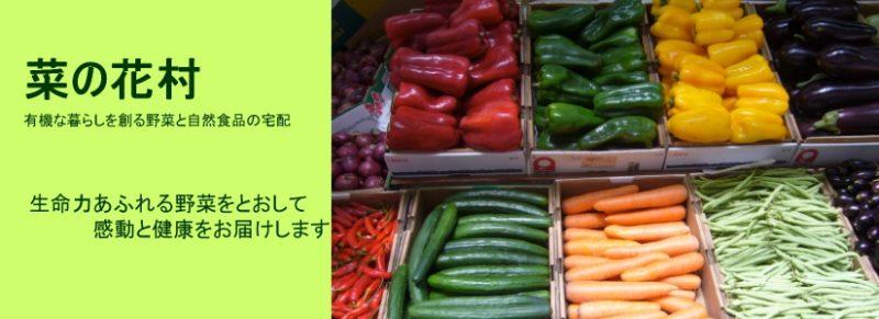 菜の花村ホームページ より たくさんの野菜が陳列された画像