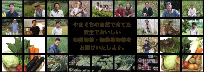 野菜工房ホームページより たくさんの生産者や野菜がならんだ画像