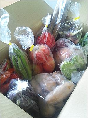 癒しの風ふうみの野菜セットの画像