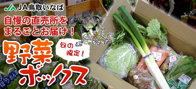 JA鳥取いなばのええもん届ける便の野菜ボックスの画像