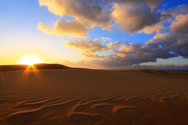 とっとり市ホームページより 鳥取砂丘の画像