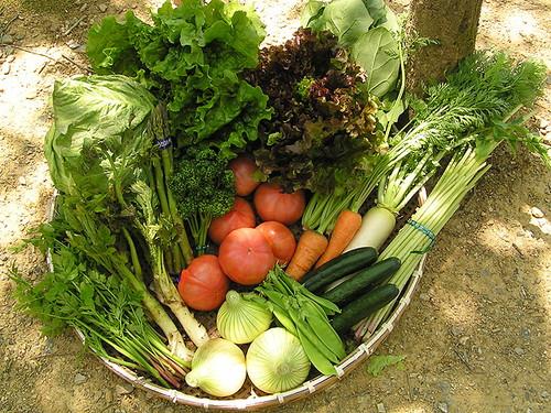 ザルの上にたくさんの野菜がならんだ内子フレッシュパークからりの野菜セットの画像
