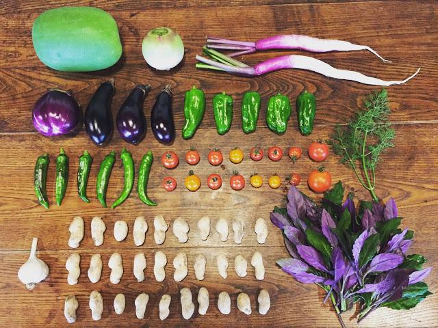 綺麗に並べられたのむら農園のたくさんの野菜の画像