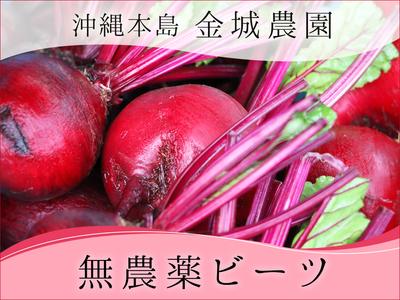 琉球マルシェ 真っ赤な色をした無農薬ビーツの画像