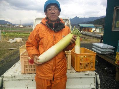 畑で大きな大根を手に持つ「あいさい農園」農園主の画像