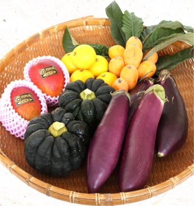 珍しい野菜がザルの上に並んだ宮崎伝統野菜セットの画像