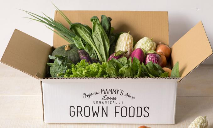 たくさんの野菜が入ったマミーズストアの野菜ボックス