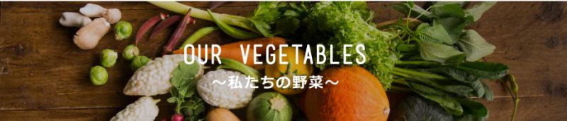 色とりどりの野菜の画像