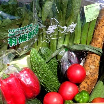 むつみやの野菜セットの画像