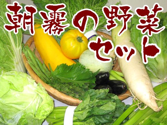 Club大地の野菜セット 朝霧の野菜セットの画像