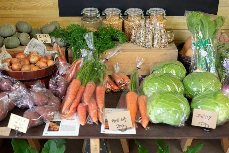 鈴木農場の直売所に並ぶ色とりどりの野菜の画像